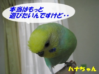 IMG230801-4.jpg