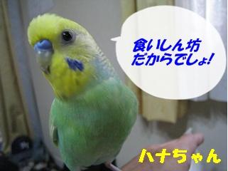 IMG230803-4.jpg