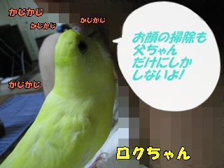 IMG230817-2.jpg