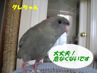 IMG230826-1.jpg