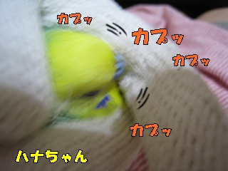 IMG230903-4.jpg
