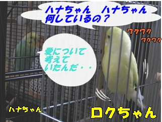 IMG230905-3.jpg