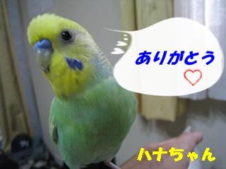 IMG230919-5.jpg