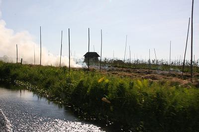 浮畑の野焼き