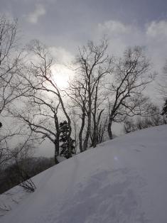 20110113_100215.jpg