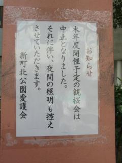 観桜会中止