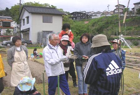 2009夏野菜