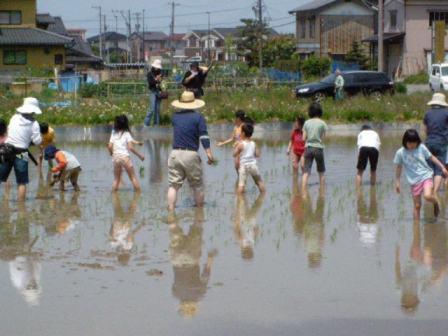 2008田植え3