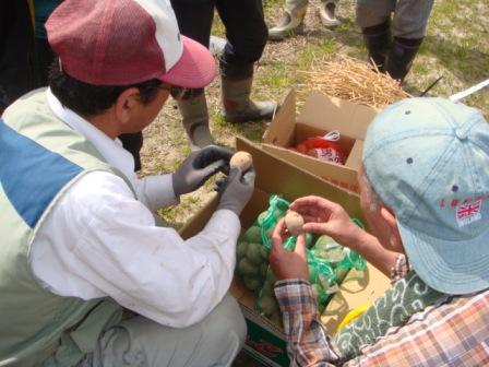 2010ジャガイモ植え付け農園講習3