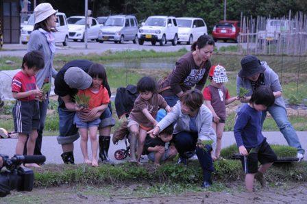 2011田植え2