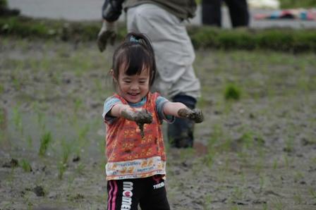 2011田植え11