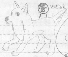 img124 dog.pen