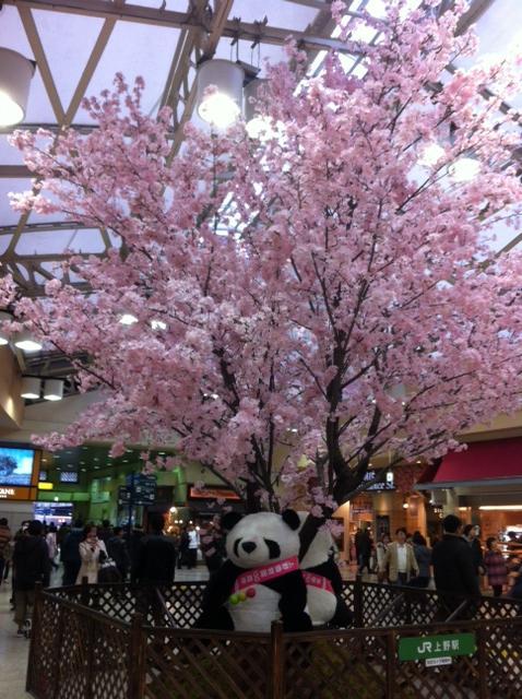 20120404上野駅1