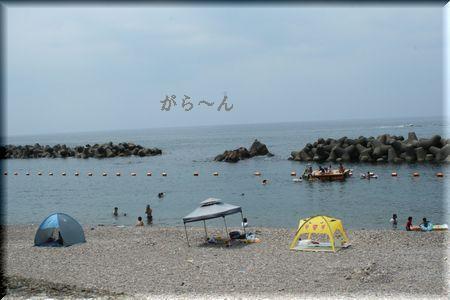 IMG_8564.jpg