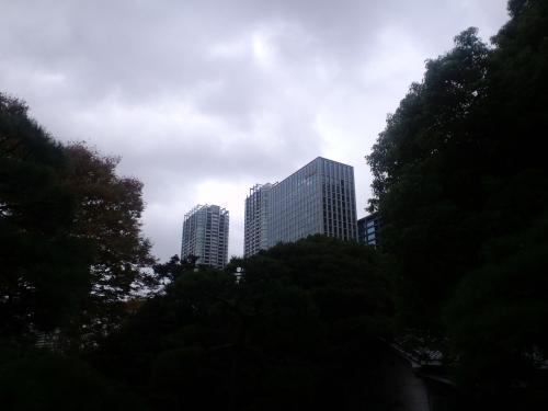 20091112115207