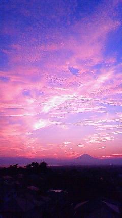 fujisawa2.jpg