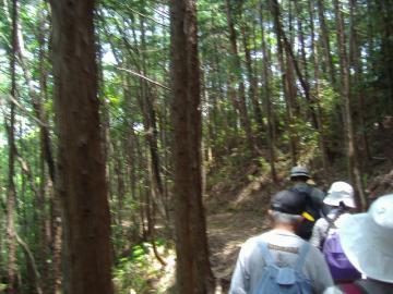 熊野古道・中辺路10