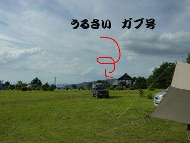 P1020664.jpg