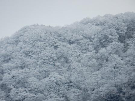 冠雪・皿ヶ嶺と周辺の山々 3