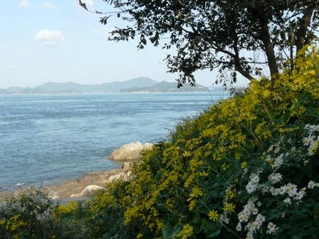 大角海浜公園 4