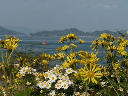大角海浜公園 6