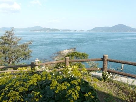 大角海浜公園 8