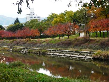 石手川公園 1