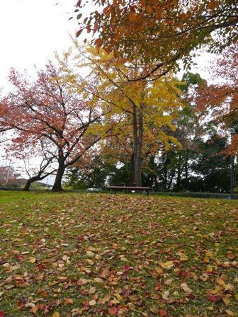 石手川公園 2