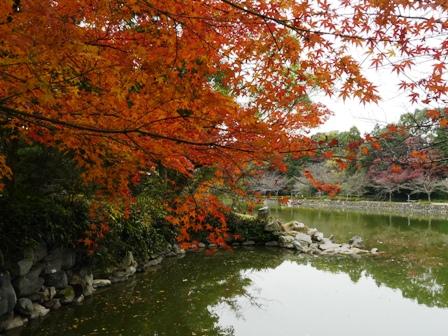 広瀬公園 5