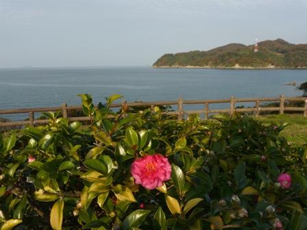 黒島海浜公園 3