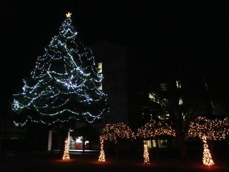 松山東雲女子大学 クリスマスツリー 2