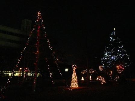 松山東雲女子大学 クリスマスツリー 4