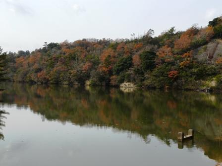 三秋の大池 1