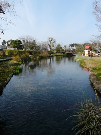 ひょこたん池公園 3