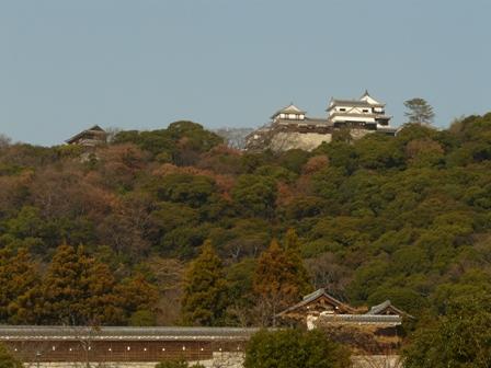 堀之内公園にて ― 松山城