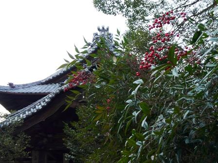仙遊寺 2