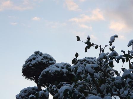 松山積雪 4