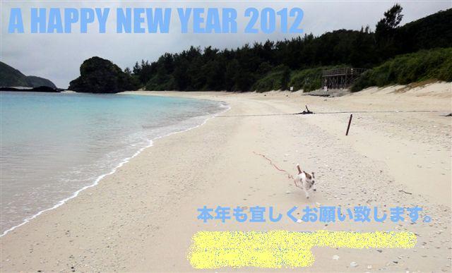 2011 沖縄 2 249のコピー年賀完成
