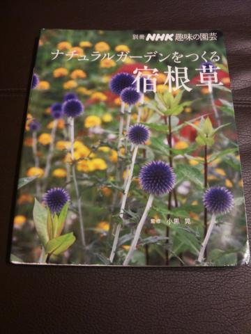 DSC_0121_convert_20120112001320.jpg