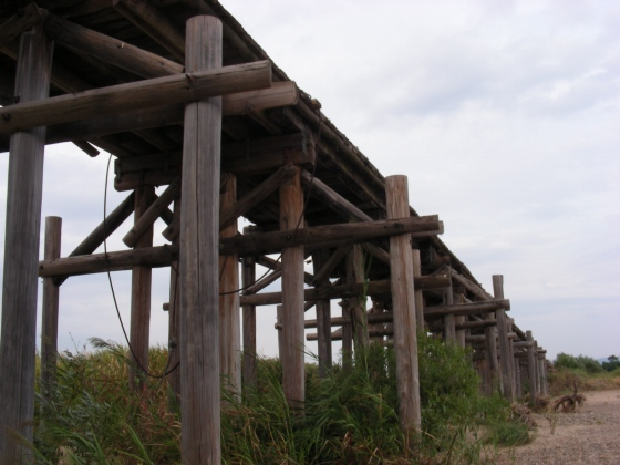 流れ橋 063