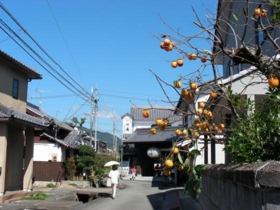篠山 083