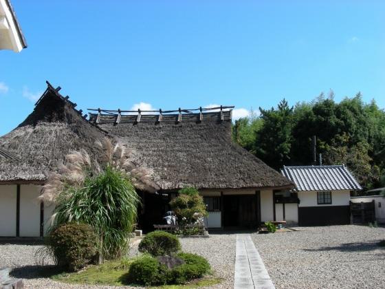 篠山 109