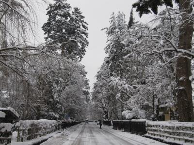 冬の武家屋敷002