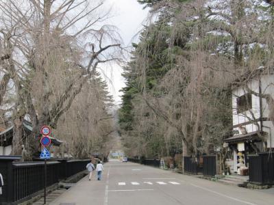 武家屋敷通り2011.04.24.01