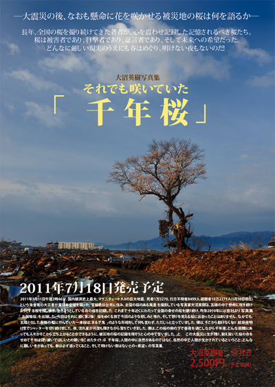 大沼英樹写真集 「それでも咲いていた千年桜」