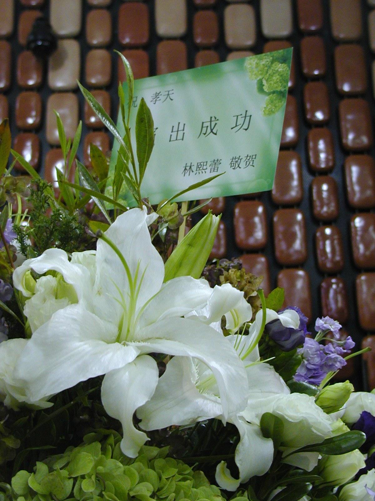 20091113Ken03.jpg