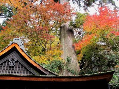 談山神社 (4)