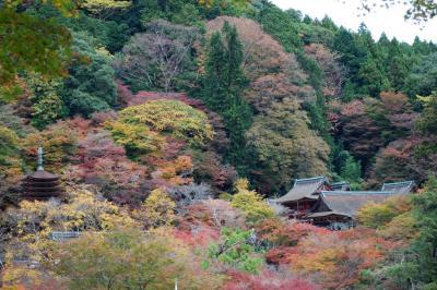 談山神社 (1)