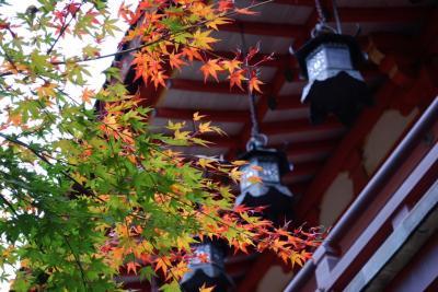 談山神社 (2)