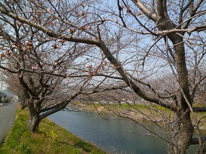 11-03-31-F01.jpg